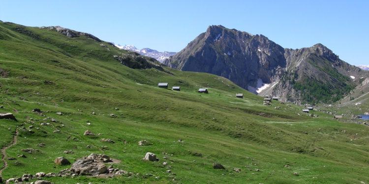 Les-grandes-randonnees-des-Alpes-francaises.jpg